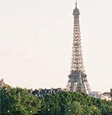 THE PARIS BULLETIN: STYLE DETAILS