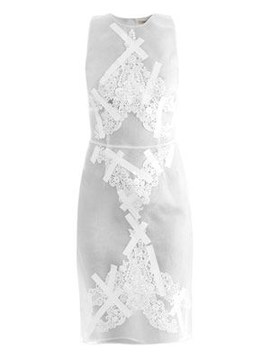Tape and embroidered organza dress