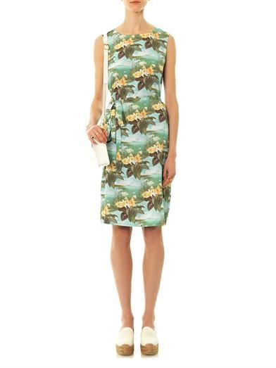 Emma Cook Swan-print sleeveless dress