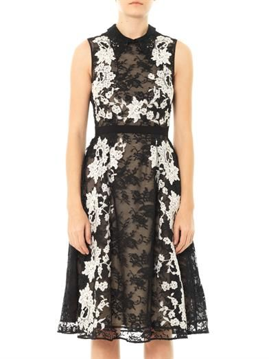 Erdem Kali lace collar dress