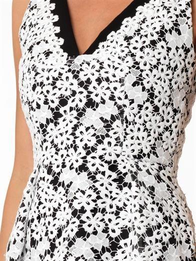 Erdem Elizabeth heavy-lace dress