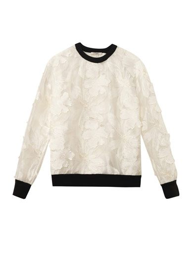 Erdem Zea embroidered-voile sweatshirt