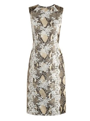 Tali snake-print lace-panel dress