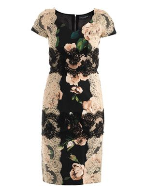 Rose-print lace panel dress