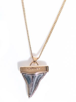 Double chain shark tooth necklace