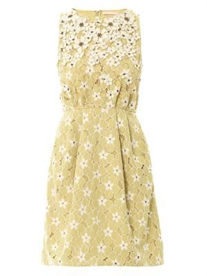 Daisy lace embroidered dress