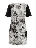 Athena print dress